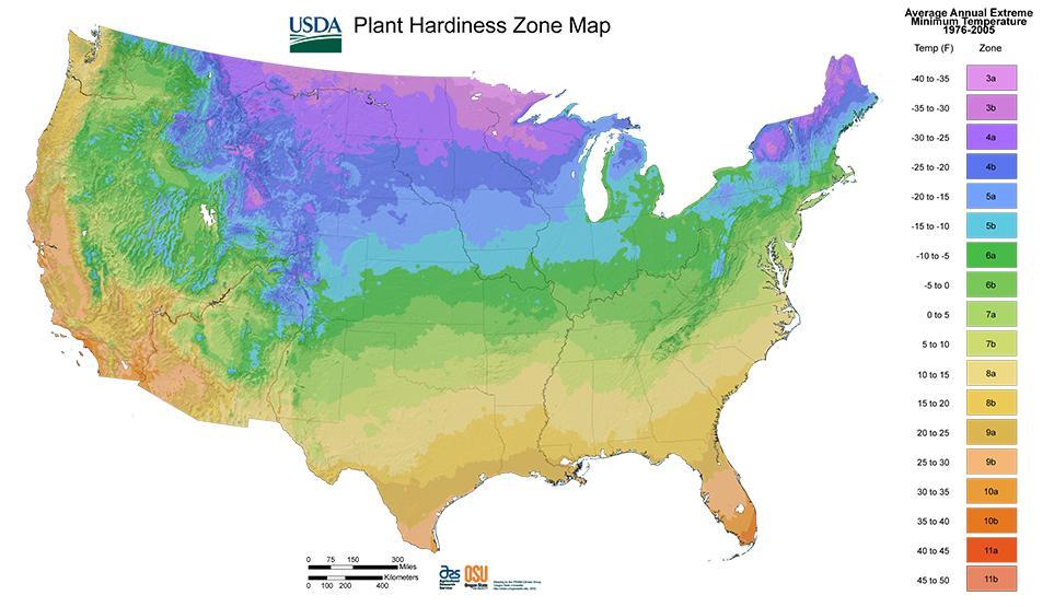 USDA ZONE